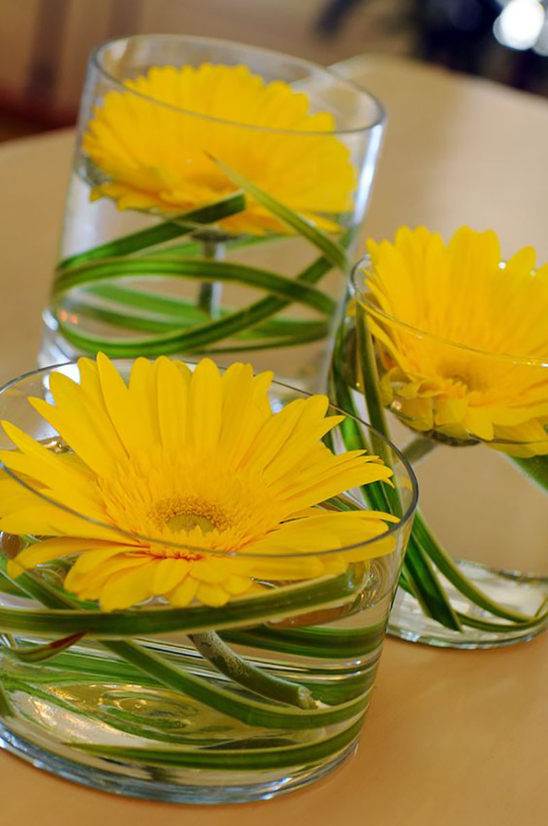 живые цветы в стакане