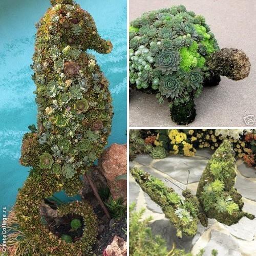 При помощи суккулентов создают живые садовые скульптуры